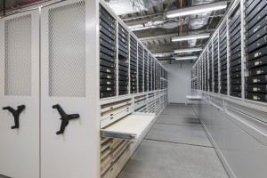 Gallery Storage Shelving on Mobile Shelving System